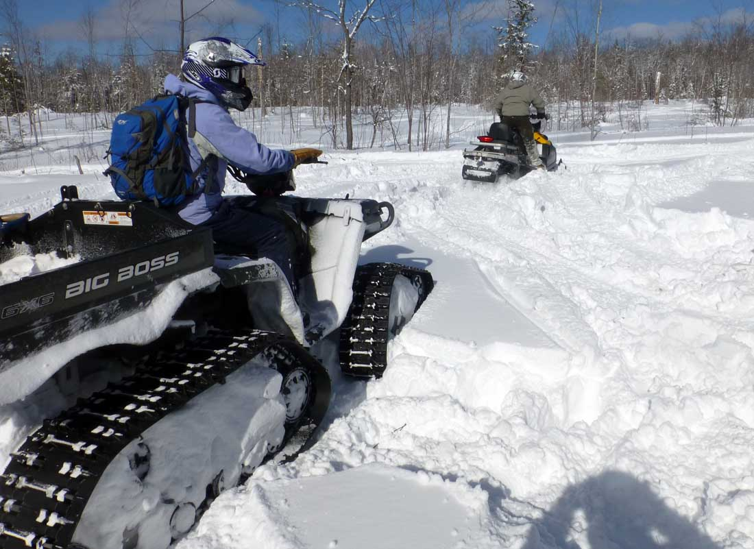 Boss in snow471.jpg
