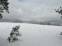 PA070033 snow in meadow.JPG