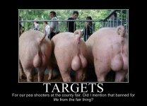 633810978868425505-Targets.jpg