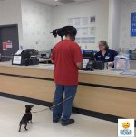 people-of-walmart-we-salute-you-with-laughter-xx-photos-254.jpg